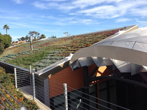 The Fallbrook Library has a cool living roof