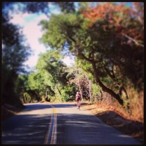lone_cyclist