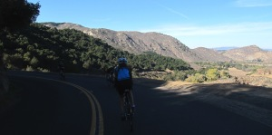 Couser Canyon Rd's northern descent is a scenic gem!