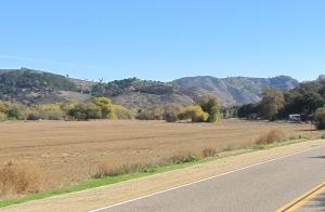 The field along Camino Del Rey.