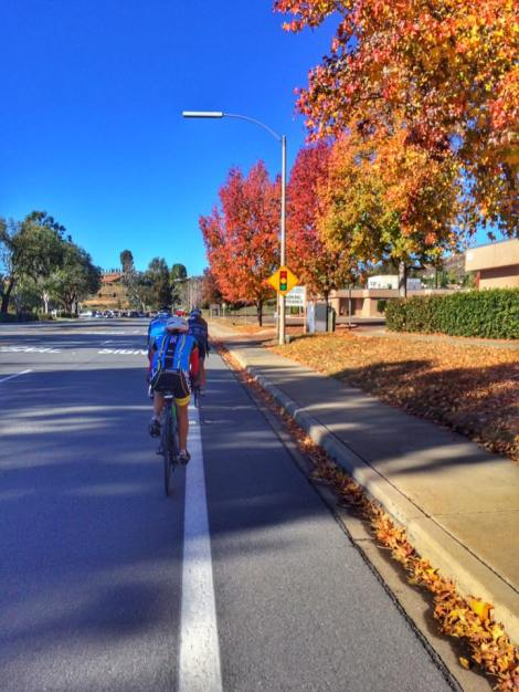 fall foliage in poway